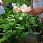 preparando-cochinita-pibil-3
